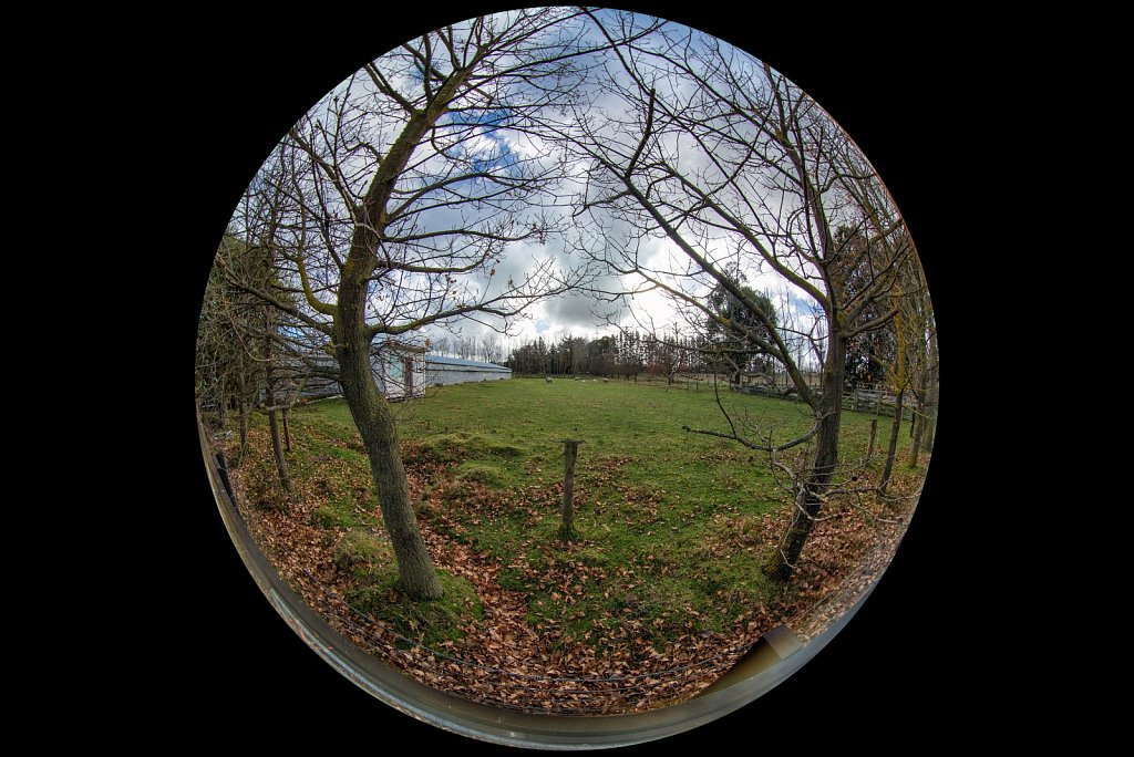 Peleng 8mm Circular fisheye