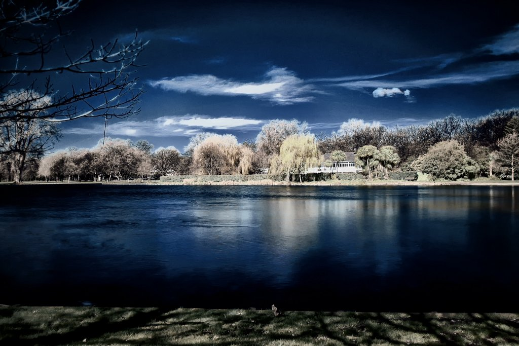 Infrared and Ultraviolet photos
